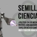 """Patente de amaranto, política de medios, topes mexicanos o robótica, temas estrella de """"Semillas de Ciencia"""""""