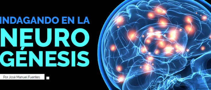 Teorías Relativas Blog: Indagando en la Neurogénesis